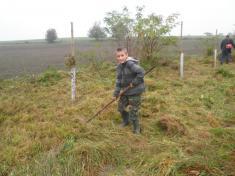 Den tateckých stromů 2.ročník
